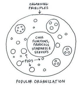 zelforganisatie
