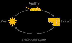 habit loop